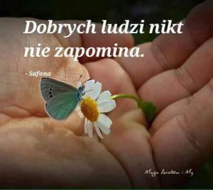 FB IMG 1535314627461